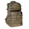Assault Pack flecktarn